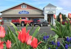 Search Sequim Properties Windermere Real Estate Sequim East